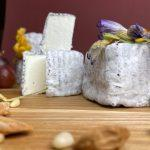 Сыр на весь мир Риты Дзюба
